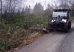Roadside brushing in Washington and Oregon